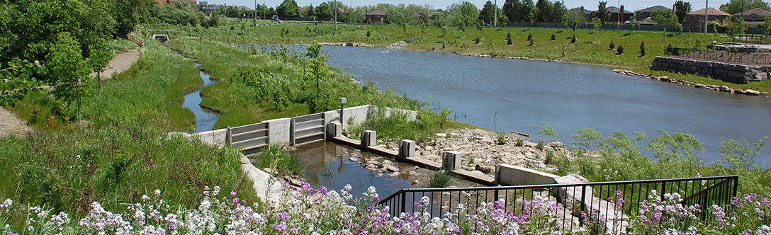 Pioneer Park Stormwater Management Facility