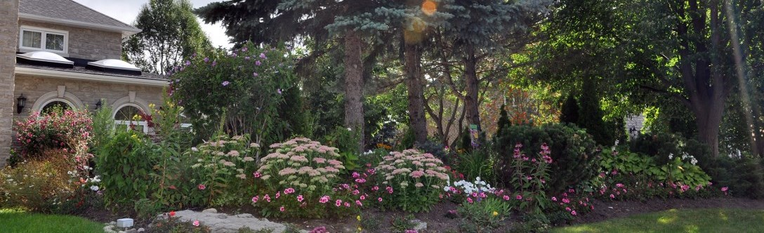 Garden at the front of the house featuring pink flowers, some bushes and trees