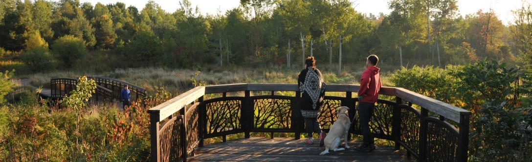 Couple with dog over looking East Humber Trail