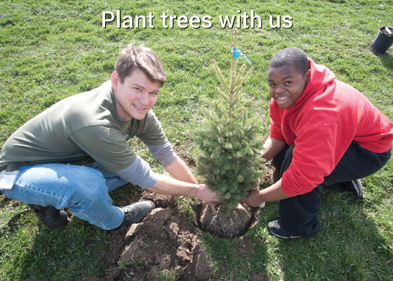 "Two boys planting a tree with the text ""plant a tree with us"" above it"