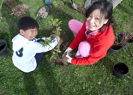 Richmond Hill tree planting events