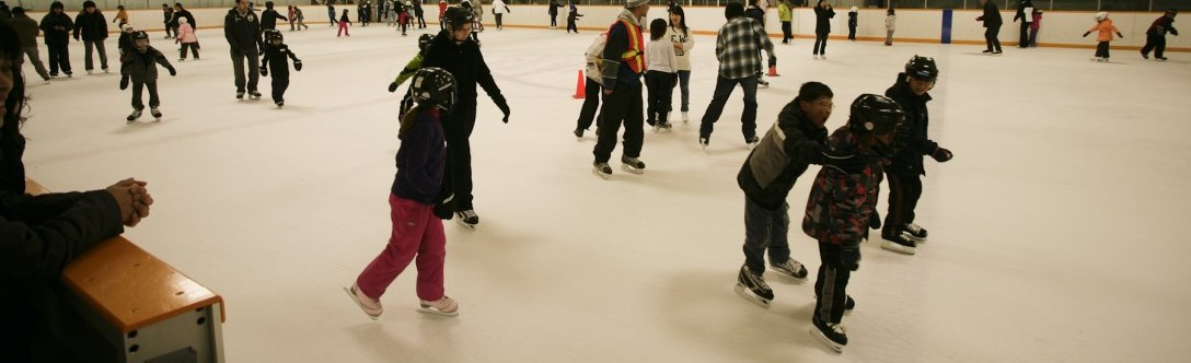 Learn to skate program photo of children on ice with instructors